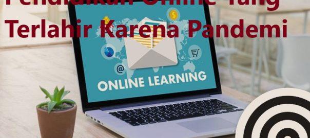 Pendidikan Online Yang Terlahir Karena Pandemi