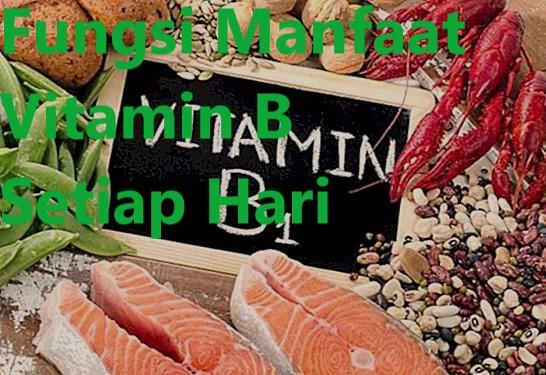 Fungsi Manfaat Vitamin B Setiap Hari